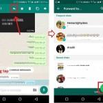 transfer-message-whatsapp