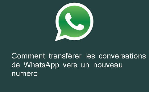 transferer-conversation-whatsapp-nouveau-numero